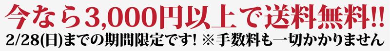 今なら3,000円以上で送料無料!!