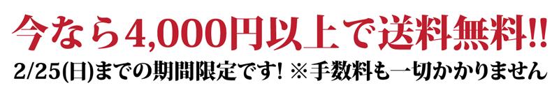 今なら4,000円以上で送料無料!!